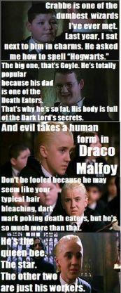 I saw Draco wearing black and green, so I started wearing black and green.